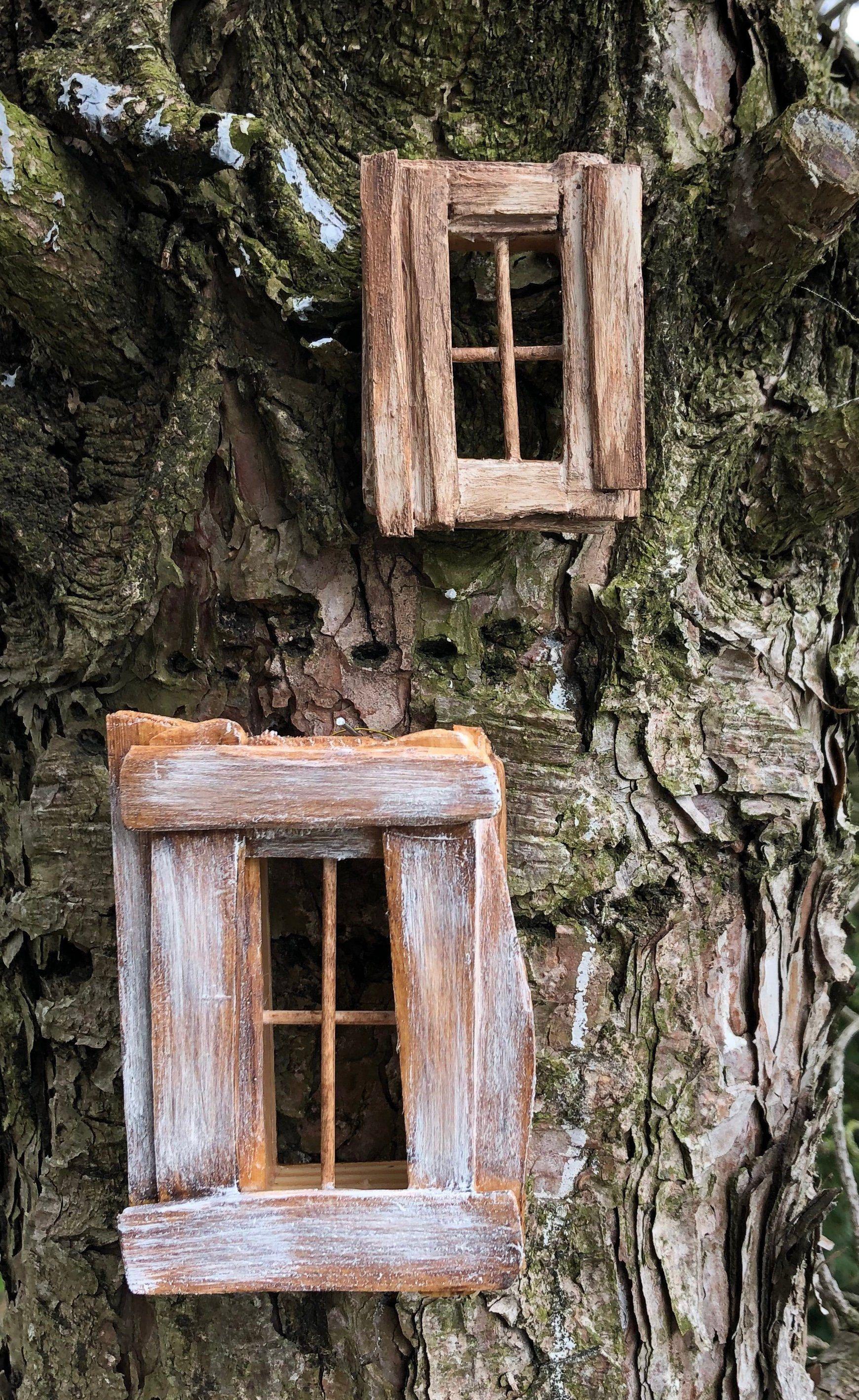 Olive Nature Folklore