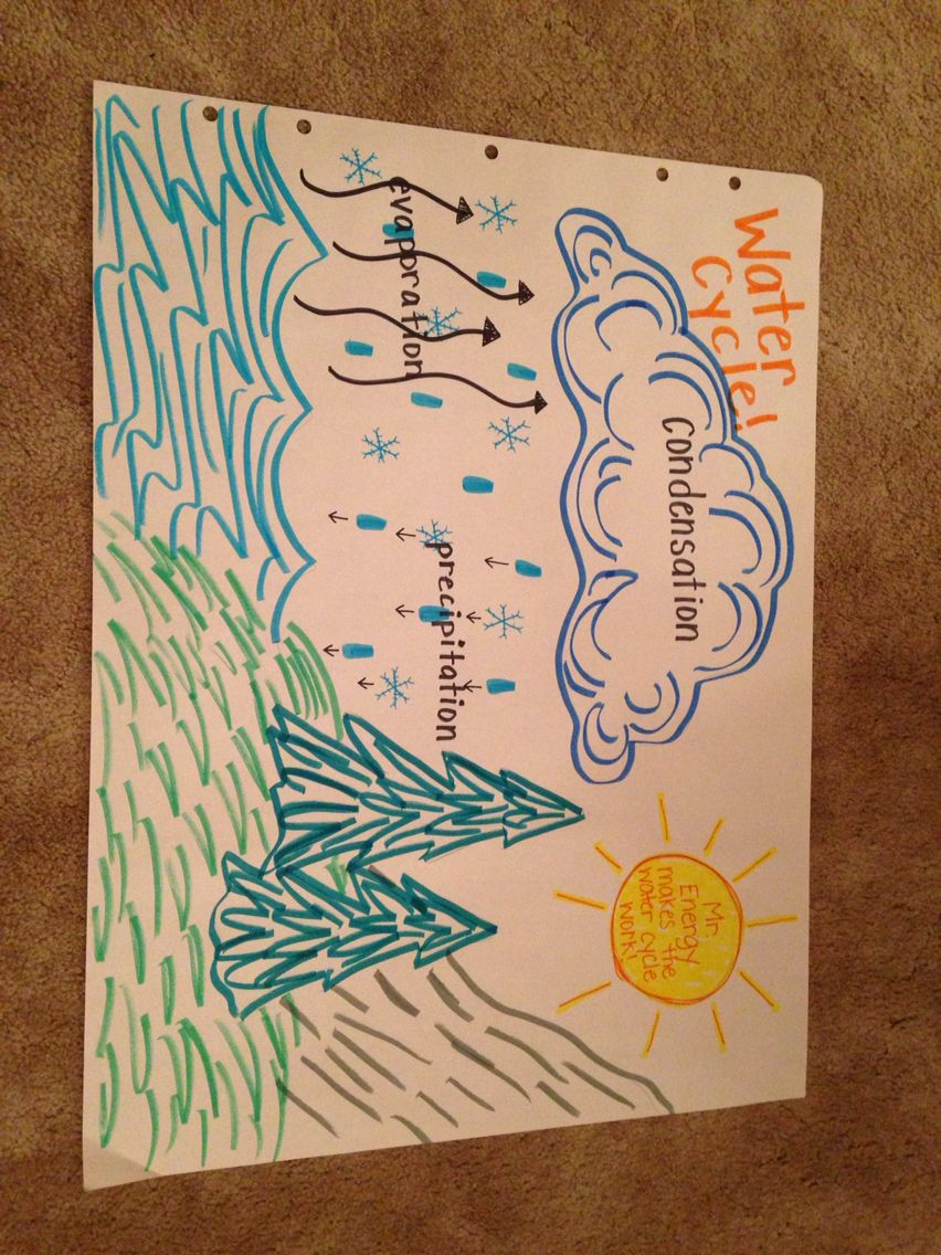 Water cycle anchor chart also science pinterest rh
