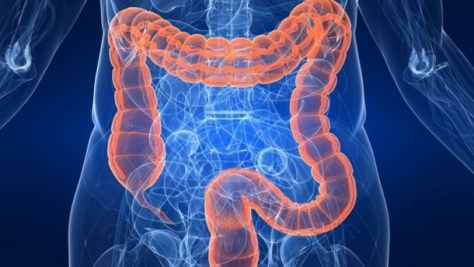 UK-National-Health-Service-undertakes-probiotic-colon-study_strict_xxl