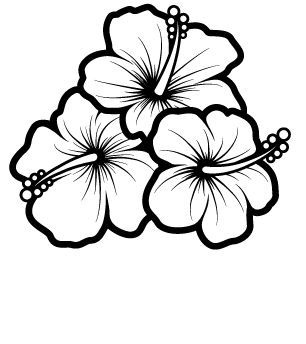 Hummingbird And Hibiscus Drawing Bing Images Sketch Coloring Page Hibiscus Drawing Flower Drawing Flower Coloring Pages