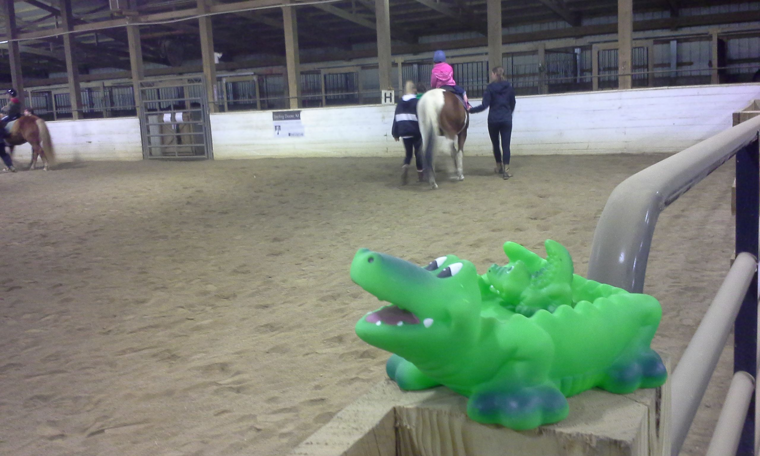Games teach riding skills and horse knowledge while ...