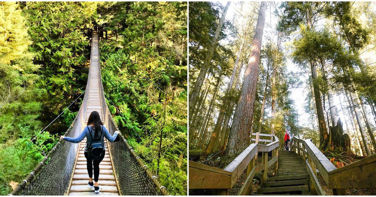 11 Unique Things To Do In Vancouver If You're Tired Of