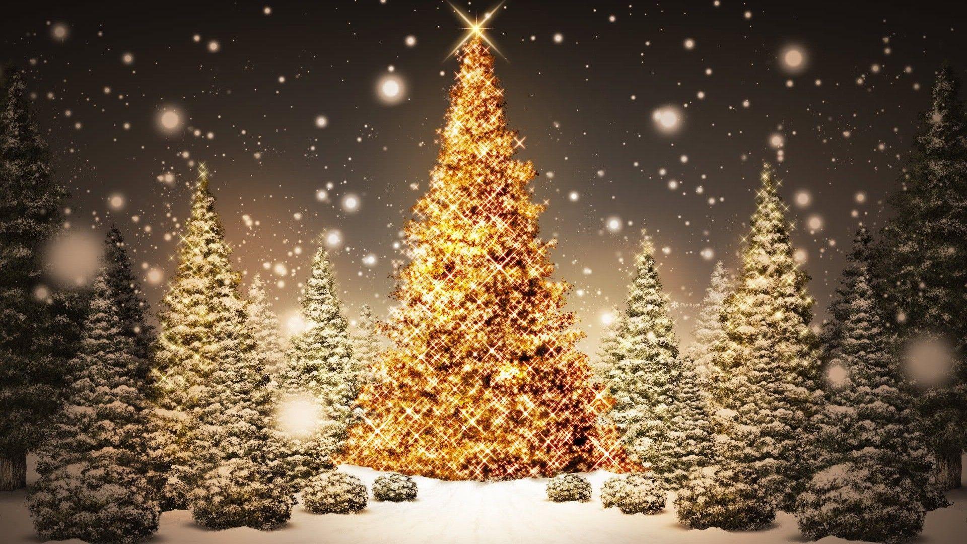 1920x1080 Christmas Tree Wallpaper Christmas Lights Wallpaper Christmas Desktop Christmas Wallpaper Free