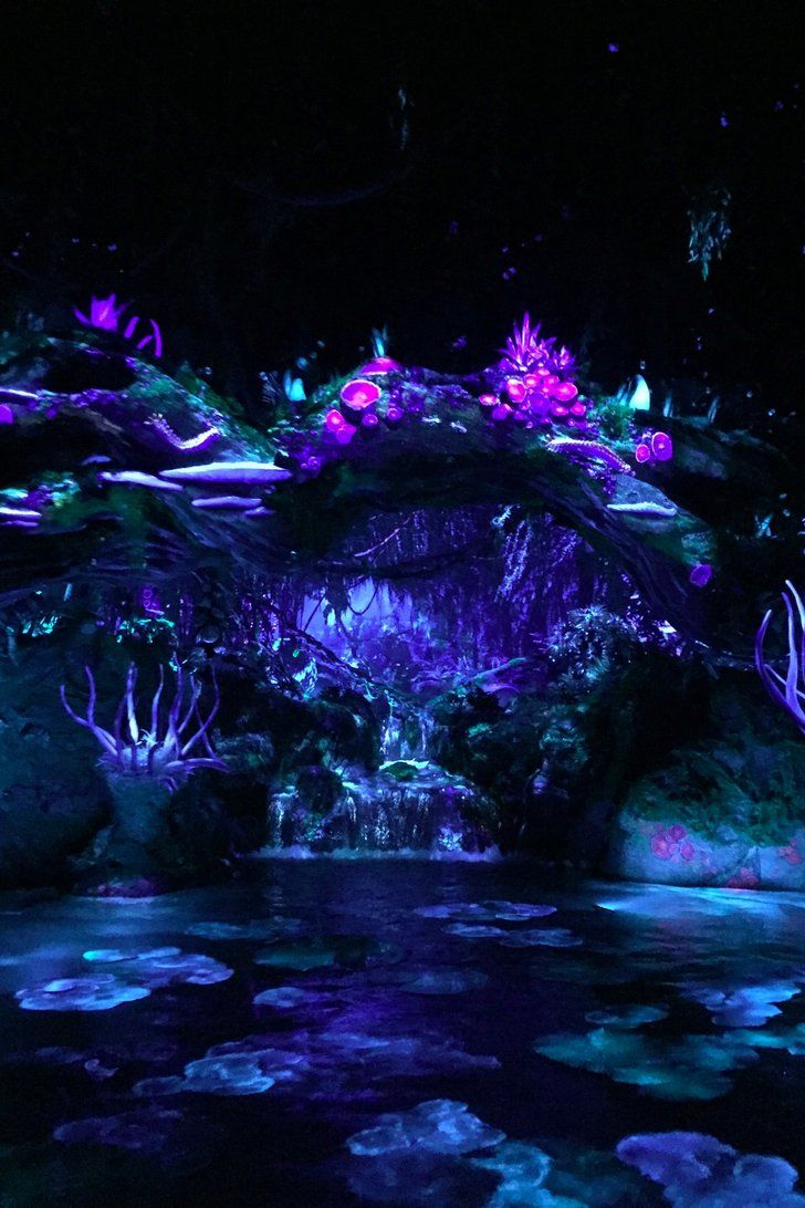 Even If Your Little Ones Haven't Seen Avatar, They'll Love This Pandora Ride