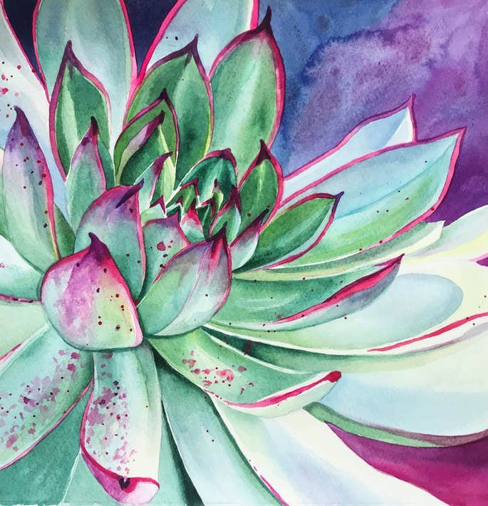 Home- Home  Gorgeous succulent watercolor painting by Kelly …