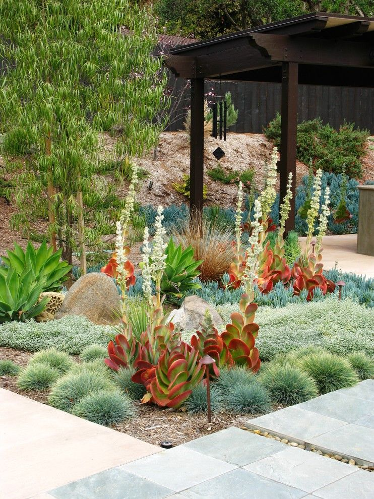 Amazing Ice Plant Decorating Ideas For Stunning Landscape Contemporary Design With Agave Boulders Copper Light Drought Tolerant Garden Lighting