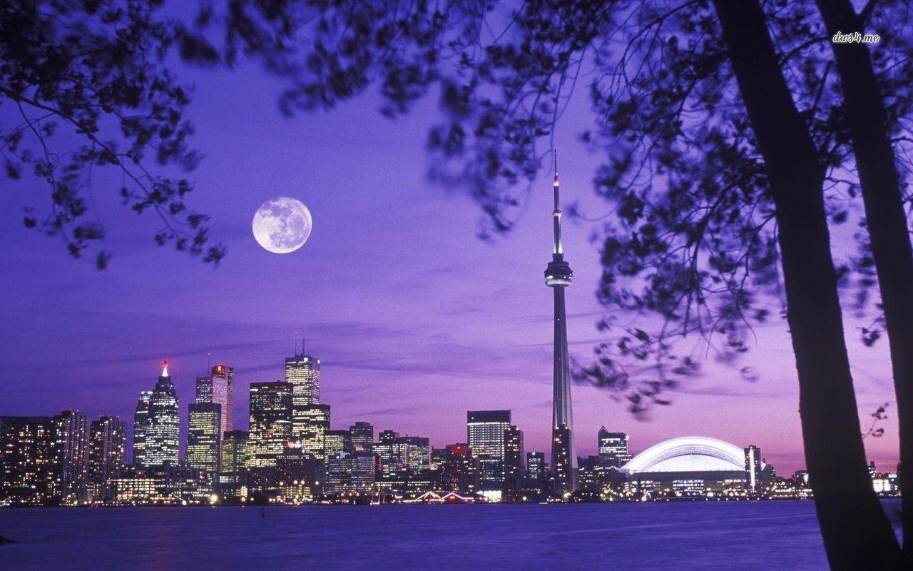 Toronto Skyline Hd Wallpaper Wallpaper Toronto Toronto Skyline Skyline