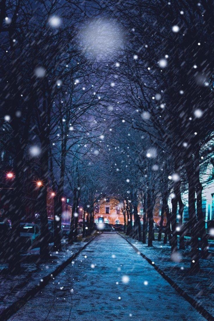 Top 10 Most Astonishing Winter Photos - Top Inspired #winterbackground