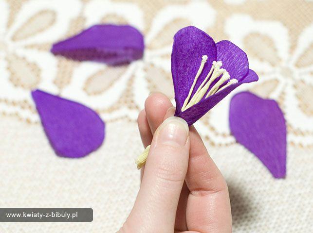 Kurs Wykonania Krokusow Kwiaty Z Bibuly Rekodzielo Bibulkarstwo Kwiaty Z Bibuly Rekodzielo Bibulkarstwo Flower Crafts Crafts Paper Flowers