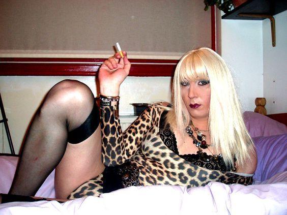 Sexy sissy cd