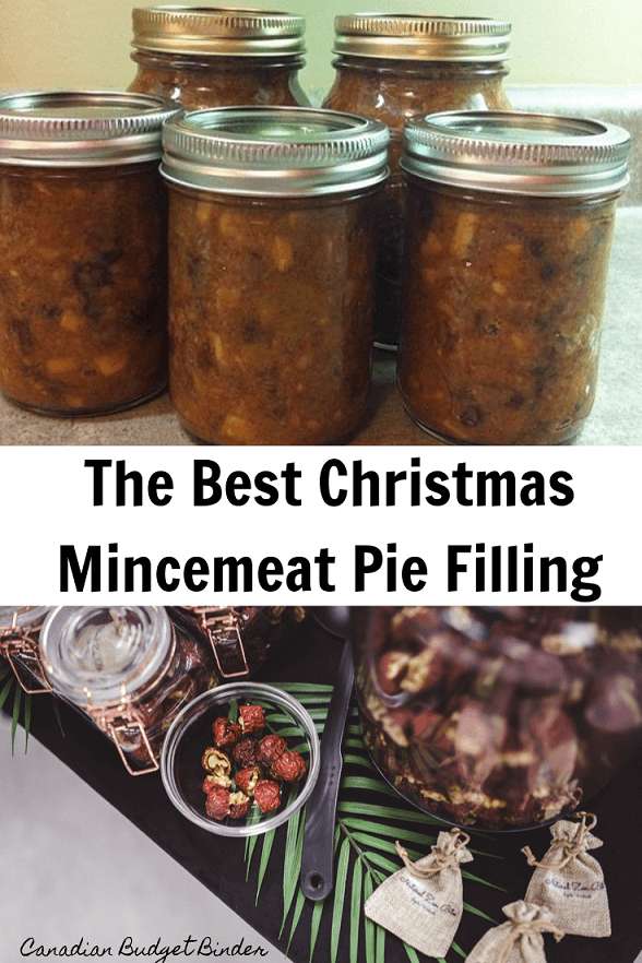 The Best Christmas Mincemeat Filling Part 1 - Canadian Budget Binder