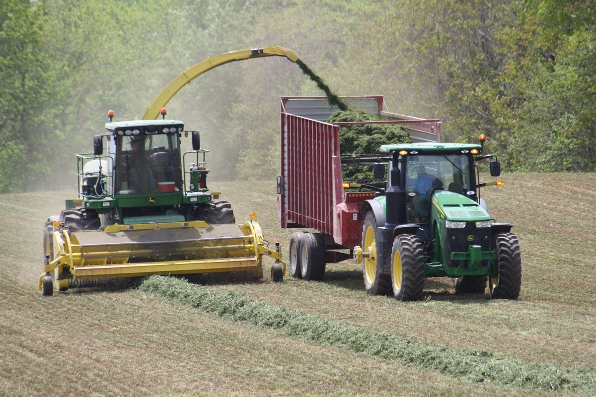 Big Tractor Power Chopping Hay Time For Hay Dairy The Toy