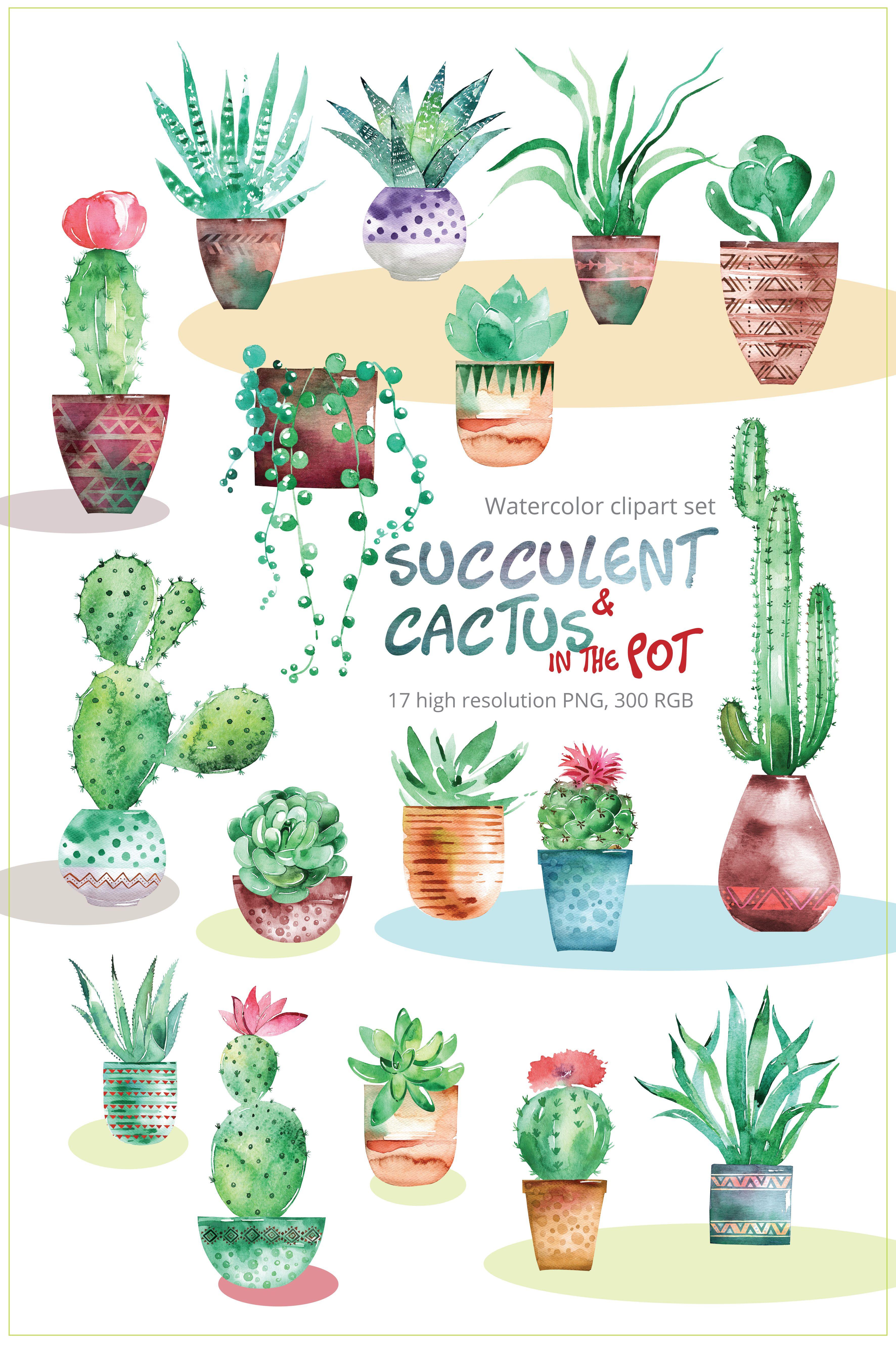 Succulent Cactus With Pots Clipart Set Watercolor Clip Art Cacti