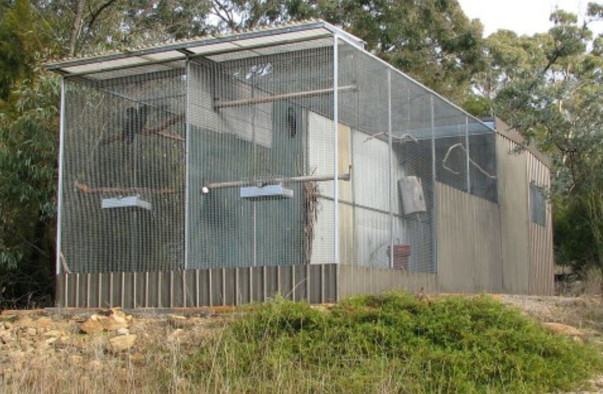 Tall aviaries for the security of breeding birds | Aviaries and ...