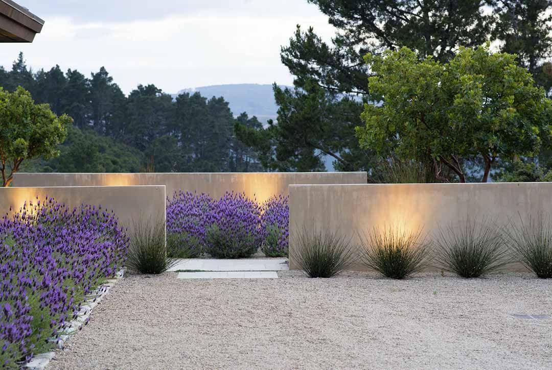 Fields Of Vision Nature Glorified Jardin Pinterest