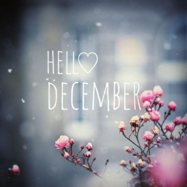 Lovely Hello December ♡
