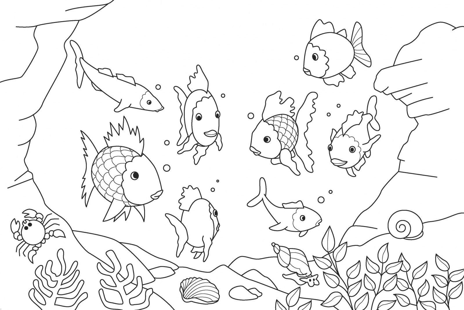 Tropical Fish Tank Coloring Pages Coloring Coloring Pages
