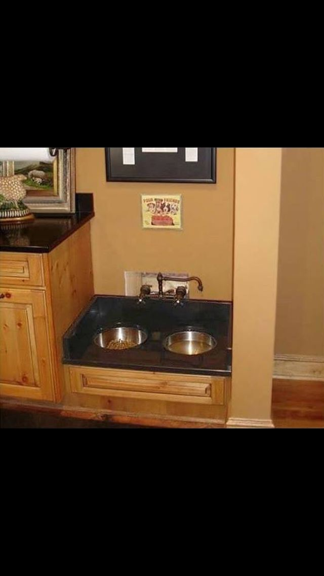 Built in dog bowl, b c dogs have to eat too. This one has a dedicated faucet... SO CLEVER!!!