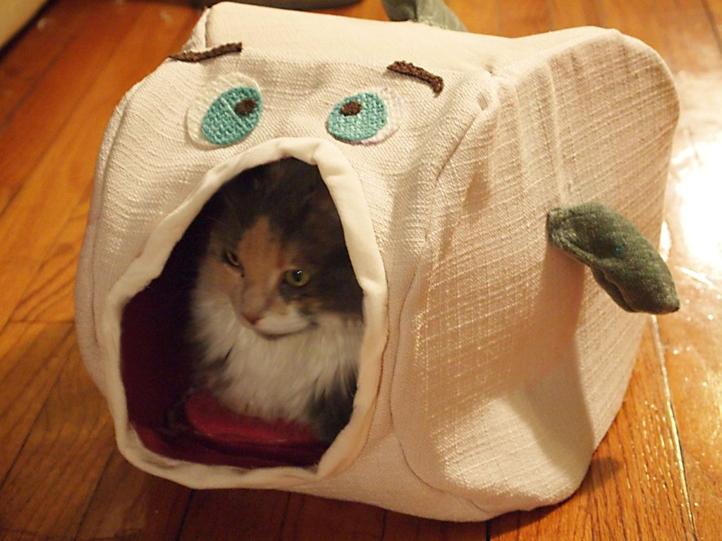 How to Sew a Fish Cat House Cat house, Animal projects, Cats