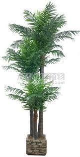 Plantas De Grandes interiores - Google Search