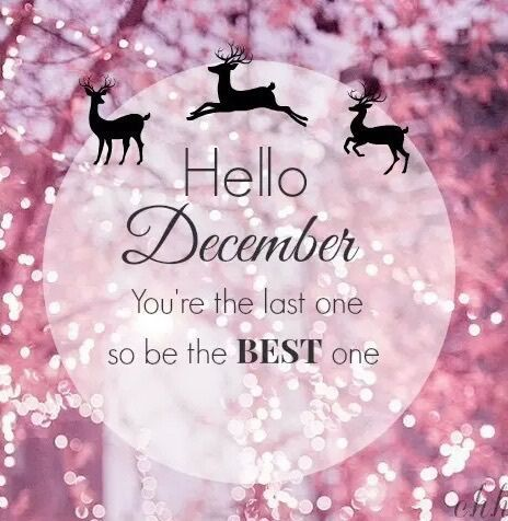 Hello December You Are The Last One So Be The Best ...