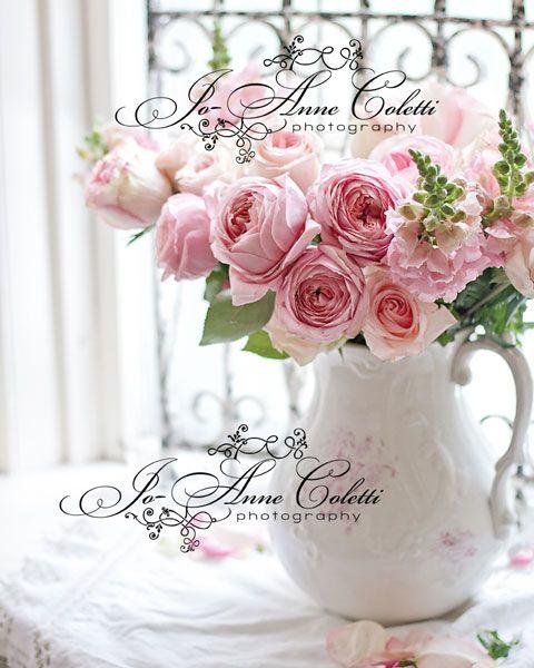 Wondrous Antique Rose Prints Shabby Chic Style Vintage Rose Prints Interior Design Ideas Lukepblogthenellocom