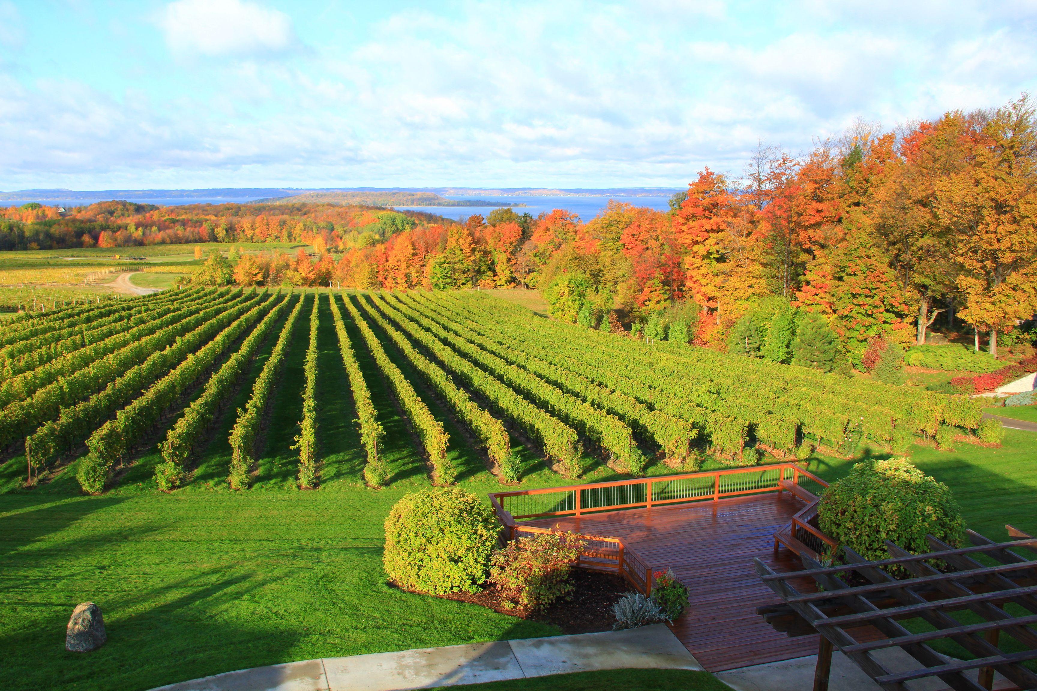 Chateau Grand Traverse Award Winning Michigan Winery Chateau Grand Traverse Wine Tour Beautiful Places