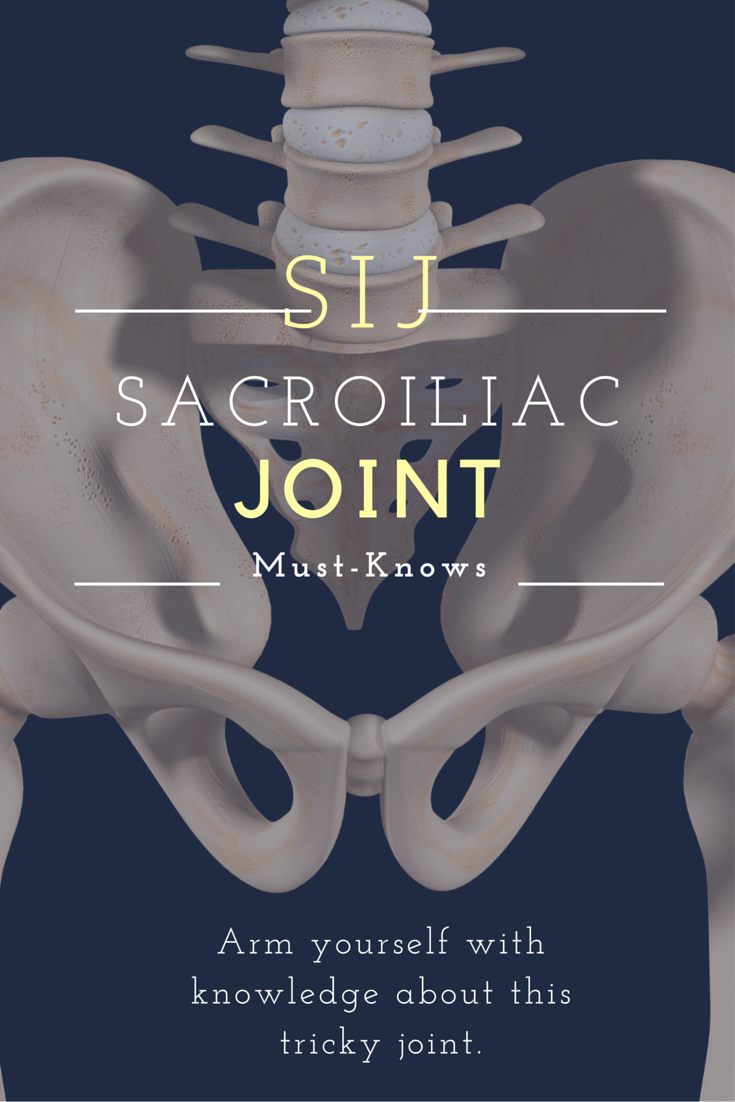 The Daunting Sacroiliac Joint | Si joint pain, Si joint and Anatomy