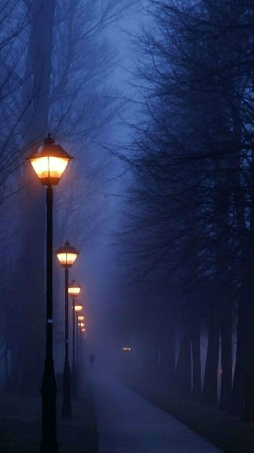 4000 Hd Wallpapers For Android Smartphones Iphones Free Foggy Night Scenery Pictures