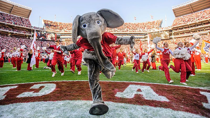 The Abcs You Must Know If You Attend The University Of Alabama