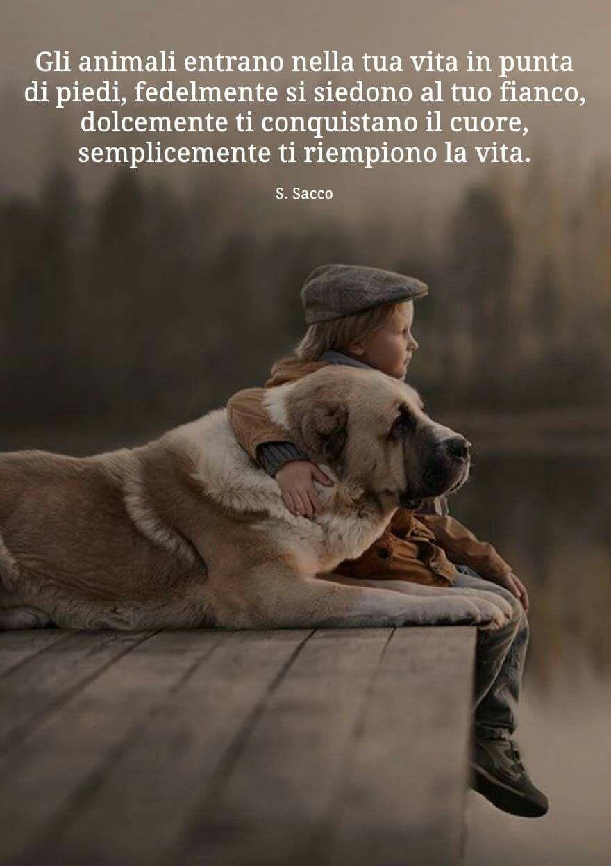 Pin di Sara Arduini su frasi...Anime | Citazioni sugli animali, Citazioni  sui cani, Citazioni su animali divertenti