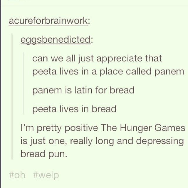 27 hunger games puns you can t help but laugh at hunger games