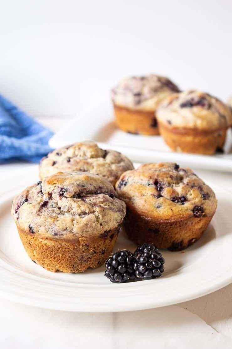Blackberry Muffins Recipe In 2020 Blackberry Muffin Dewberry Recipes Berries Recipes