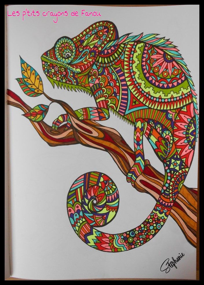 Livre Hachette Art Therapie Bestiaire Extraordinaire ZentangleAdult ColoringColoring BooksGeometryMeditationChameleonsReptilesCrayonsBugs