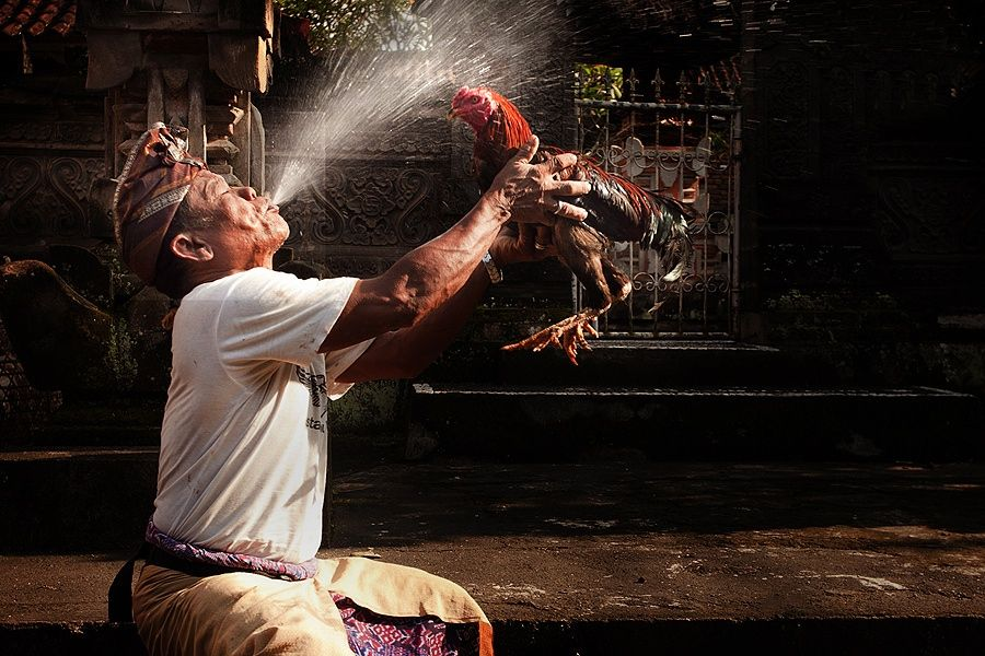 Spraying Cock by Jeffry Surianto on 500px