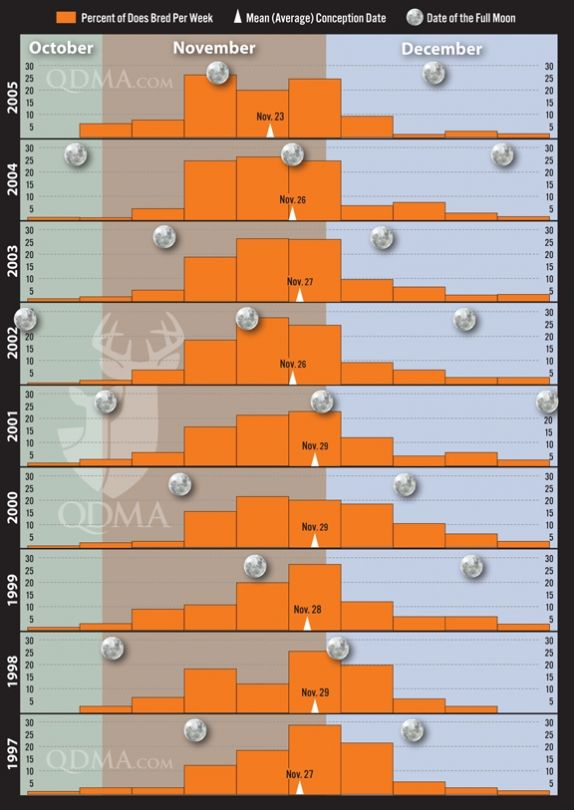 Is There A Link Between Moon Phase And Rut Peak This Chart From Qdma Shows
