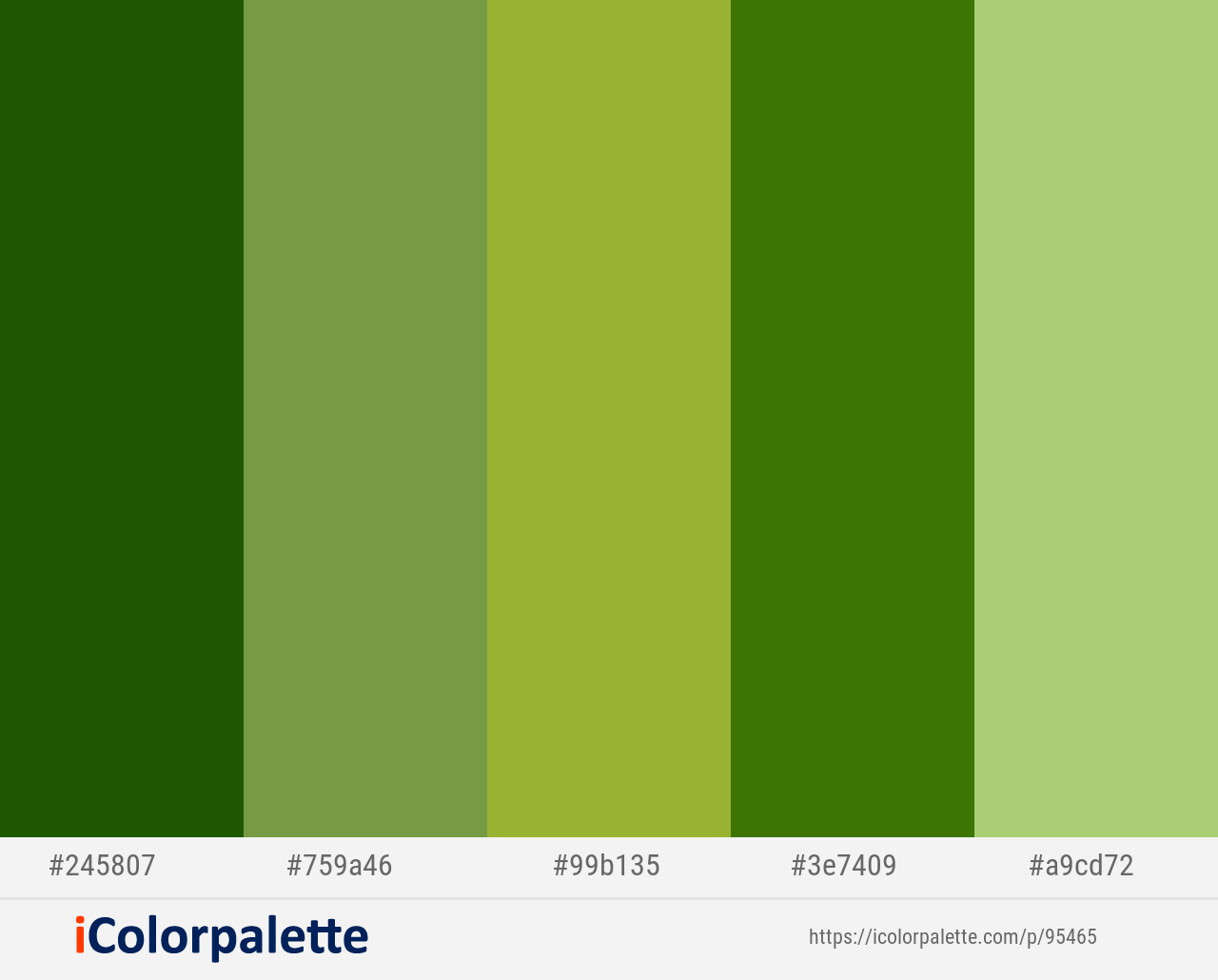 San Felix Asparagus Sushi Green Leaf Wild Willow Color Scheme Icolorpalette Green Colour Palette Green Colors Color