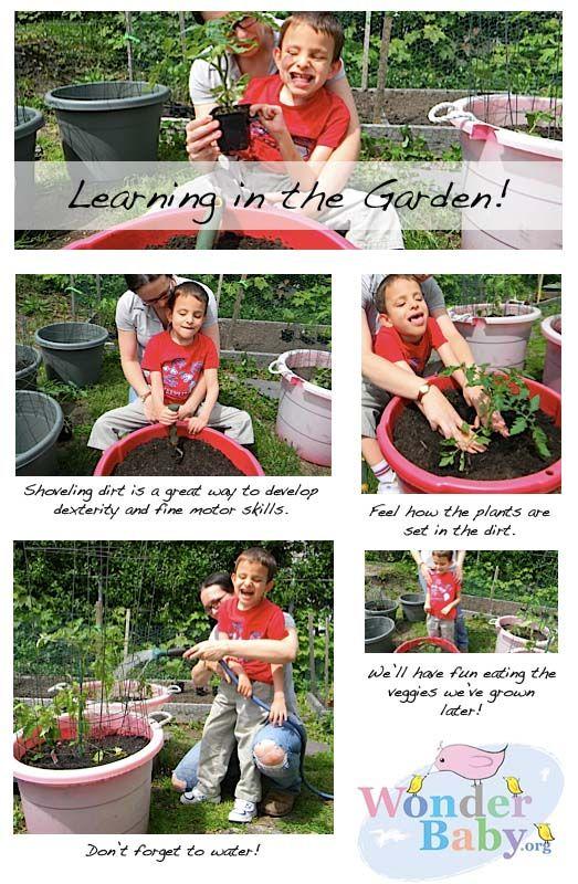 Gardening With A Blind Child Wonderbaby Org Blind Children Outdoor Activities For Kids Sensory Garden