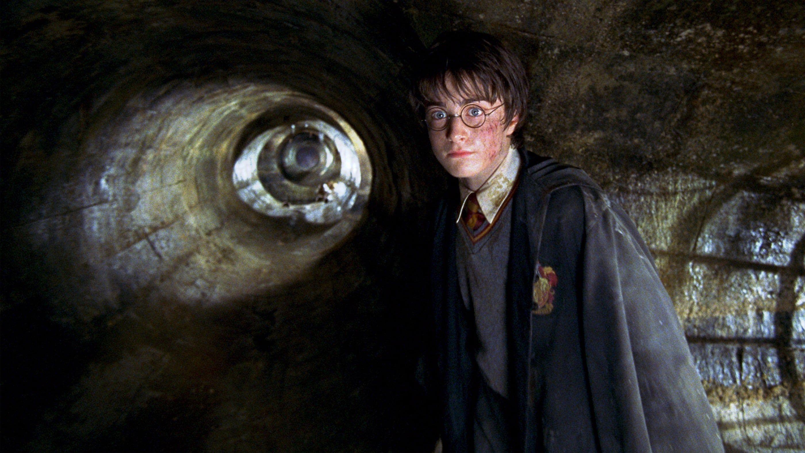 Harry Potter Und Die Kammer Des Schreckens 2002 Ganzer Film Deutsch Komplett Kino Harry Potter Konnte Sich Sch Harry Potter Harry Potter Fantastic Beasts Harry