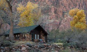 The fall colors of cottonwood trees rise above a cabin built next to the Grand Canyon walls. Phantom Ranch, Grand Canyon National Park, Arizona, USA.