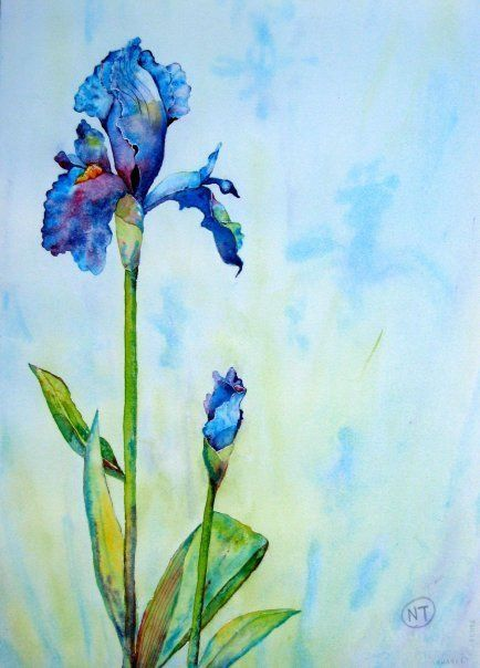 Pin Von Ilona Semtshishina Auf Pinturas 4 Aquarell Blumen Kunst