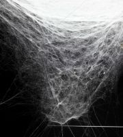 Tomás Saraceno on Sculpting with Spiders in his Esther Schipper Show | BLOUIN ARTINFO