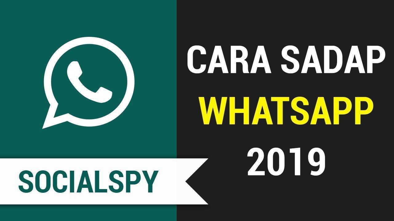 Sadap Whatsapp Dengan Aplikasi Spy Myspy Teman Aplikasi