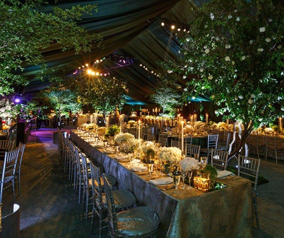 Indoor Wedding Reception Ideas: Fabulous Secret Garden Party Reception On A Budget