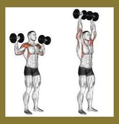Resultado de imagen de standing dumbbell shoulder press | Standing Dumbbell Shoulder Exercise... #trapsworkout