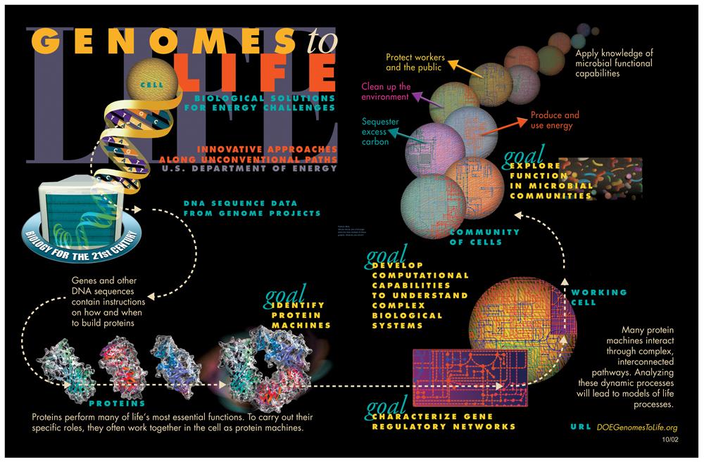 Genomics Gtl Pictorial Program Systems Biology Wikipedia In 2020 With Images Systems Biology Biology Dna Research