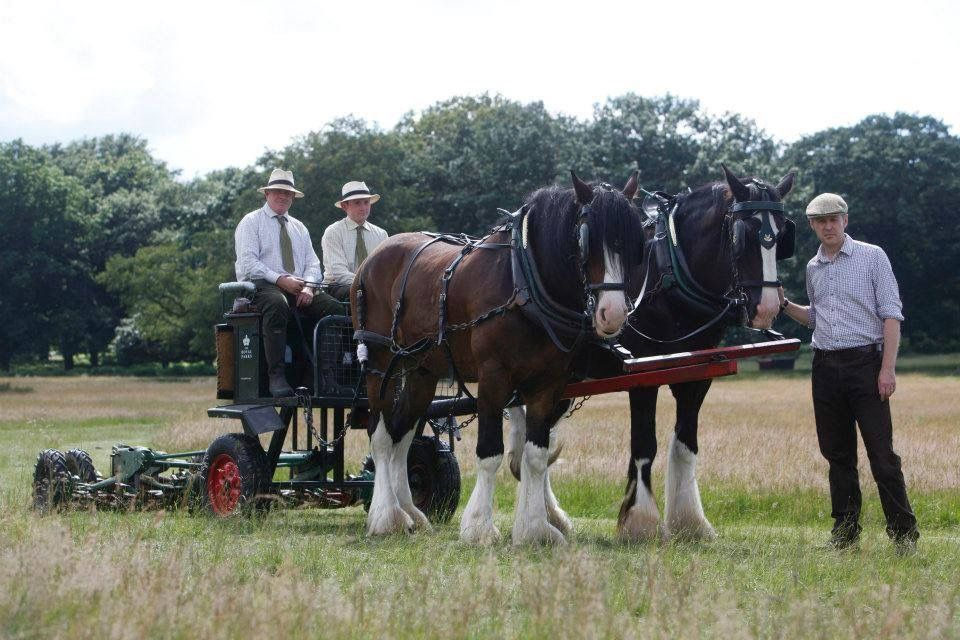 Horses and Cart in Richmonds Park Richmond Surrey England