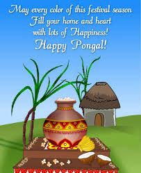 Image result for pongal greetings pictures card pinterest image result for pongal greetings pictures m4hsunfo
