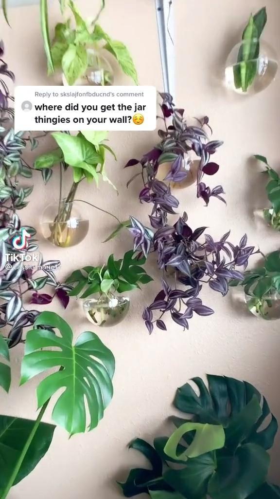 Wall hanging globe planters