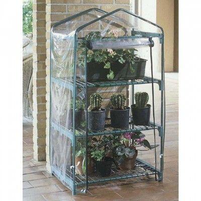 Proteggiamo in fiori e le piante e le ammiriamo con la serra per ...